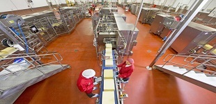 High angle view of workers with digital tablet checking large blocks of cheese at production line in processing plant