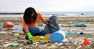 Garbage pick up beach pollution